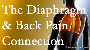 Spinal Care Clinic recognizes the relationship of the diaphragm to the body and spine and back pain.