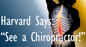 Burlington and Hamilton chiropractic for back pain relief urged by Harvard