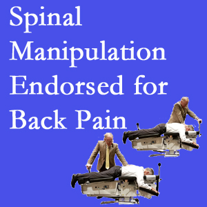 Burlington and Hamilton chiropractic care includes spinal manipulation, an effective,  non-invasive, non-drug approach to low back pain relief.