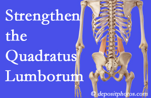 Burlington and Hamilton chiropractic care offers exercise recommendations to strengthen spine muscles like the quadratus lumborum as the back heals and recovers.